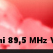 Radio Salminen Logo