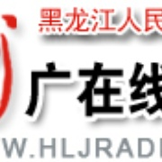 Heilongjiang Music Radio 958 Logo