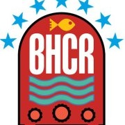 Brighton and Hove Community Radio Logo