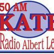 The Hawk - KATE Logo