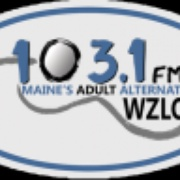 The Zone - WZON Logo