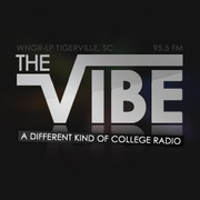 The Vibe - WNGR-LP Logo
