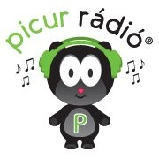 Picur Radio Logo